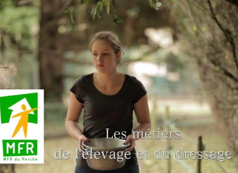 MFR de Mortagne, élevage et dressage