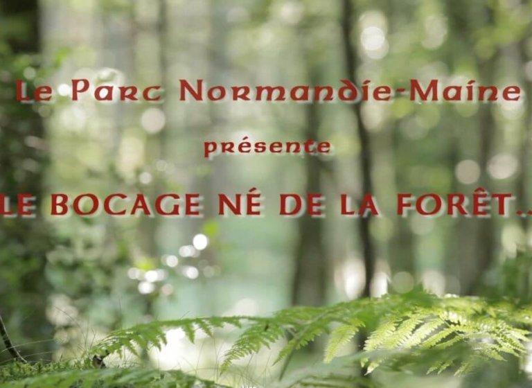 Le Parc Normandie Maine présente : » le bocage né de la forêt «