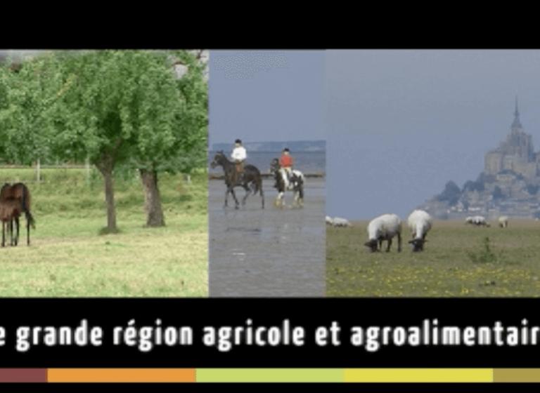 CHAMBRE D'AGRICULTURE DE NORMANDIE