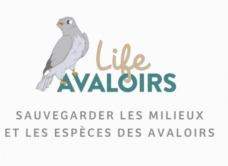 Parc Normandie Maine : Life Avaloirs